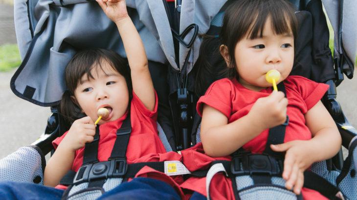 子連れ旅行を関東甲信越で!おすすめの宿やテーマパークは?
